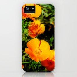 Golden Poppy iPhone Case
