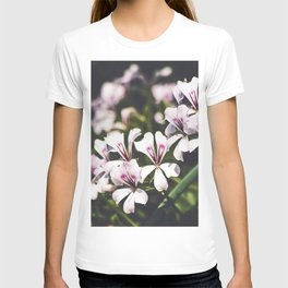 Field of Flowers 11 T-shirt