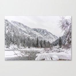 Winter Wilderness Canvas Print