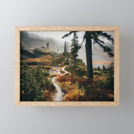 Pacific Northwest Forest Trail Framed Mini Art Print
