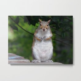Is it time for lunch? Metal Print