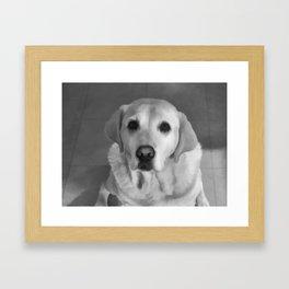Cookies PLEASE! B&W Framed Art Print