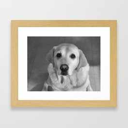 Cookies PLEASE! B&W Framed Art Print