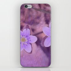 Purple Spring Flowers iPhone & iPod Skin