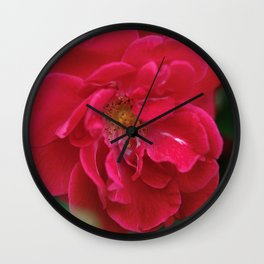 Red Red Roses... Wall Clock