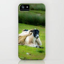Wind sheared Sheep iPhone Case