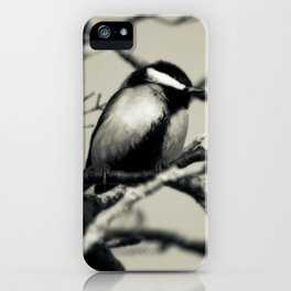A great view iPhone Case