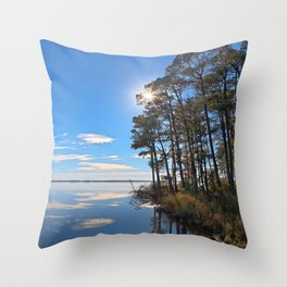 Blackwater Sunburst Marsh Throw Pillow