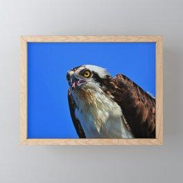 Fish for Breakfast II Framed Mini Art Print