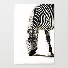 Zebra - paint Canvas Print