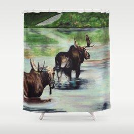 Calm Pond, Newfoundland Moose Shower Curtain