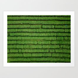 An aerial shot of a tea plantation field in the Northern Thailand Art Print