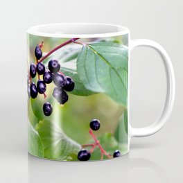 Poison or not : Snail with berries Coffee Mug