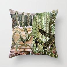 Southwest Garden Throw Pillow
