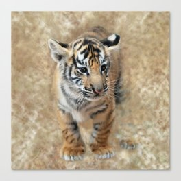 Tiger cub emerging Canvas Print