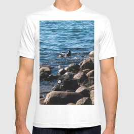 Rocks on the Water T-shirt