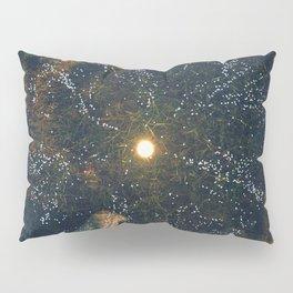 Day 0964 /// Creation Pillow Sham