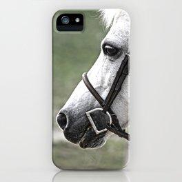 Fleabit Gray Pony iPhone Case