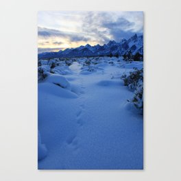 Snow-covered Grand Tetons at Sunset Canvas Print