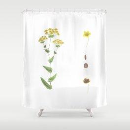 Botanical illustration Shower Curtain