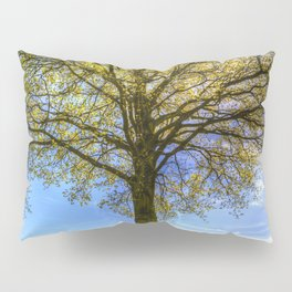 The Summer Farm Tree Pillow Sham