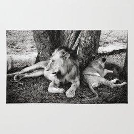 African Safari Lion Rug