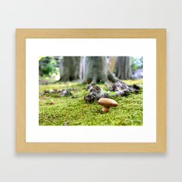 Fairy Point of View Framed Art Print