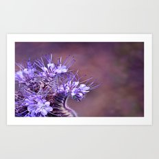 Purple Tips Art Print