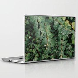Spring Dew Drops Laptop & iPad Skin