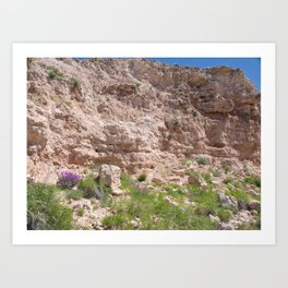 Texas Canyon Art Print