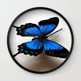 Papilio Lorquinianus Wall Clock