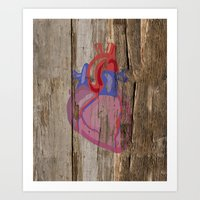 anatomical heart Art Prints featuring Anatomical Heart by Kyle Phillips