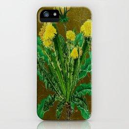 Antique Style Grundy Avocado Color Dandelion Print Art iPhone Case