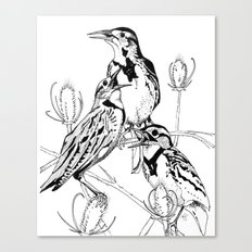 Three Western Meadowlarks Canvas Print