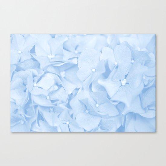 Pastel Blue Flowers Canvas Print
