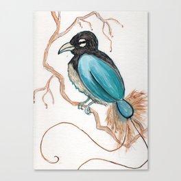 Bird of Paradise 4 Canvas Print