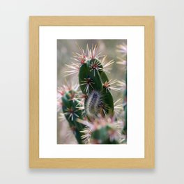 Fuzzy Caterpillar on Cactus 1 Framed Art Print