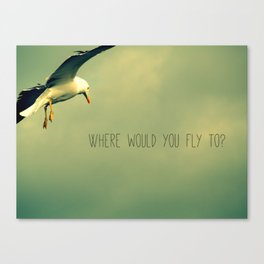 Where would you fly to? - Seagull Canvas Print