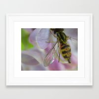 bug Framed Art Prints featuring bug by Dottie