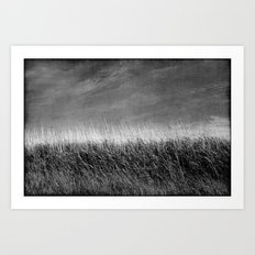 Nature in black and white ~ 4 Art Print