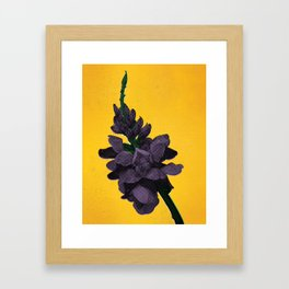 Invasive Species Series: Kudzu Flower Framed Art Print