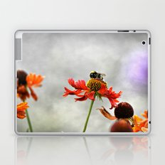 Gentle dream Laptop & iPad Skin