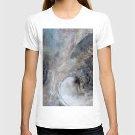 Abalone Abstract T-shirt