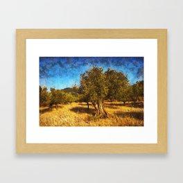Olive Grove Framed Art Print