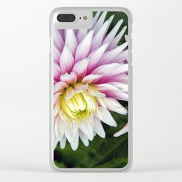 Dahlia / In The Garden / 11 Clear iPhone Case