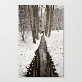 Stream and trees in winter Park Canvas Print