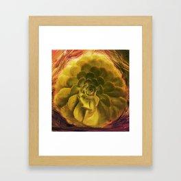 Dusucculent Framed Art Print