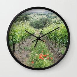 Vineyard in Tuscany, Italy  Wall Clock