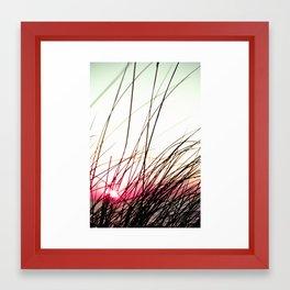 4414 Framed Art Print