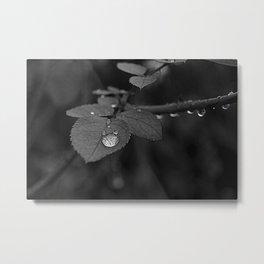Tear Drop Black & White  Metal Print